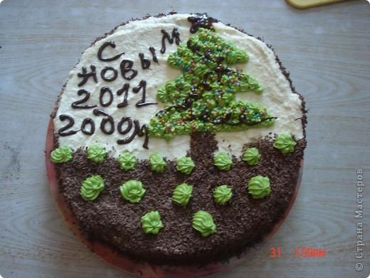 Сделала вот такой торт, рецепт очень простой, бисквитные коржи, пропитать сиропом на коньяке и промазать кремом (сгущенка и масло сливочное).Если кто заинтересовался более подробно пишите, напишу рецепт. фото 1