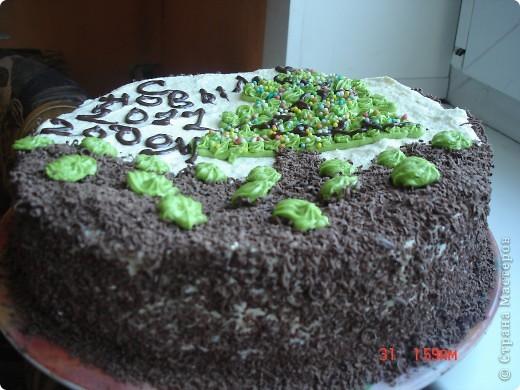 Сделала вот такой торт, рецепт очень простой, бисквитные коржи, пропитать сиропом на коньяке и промазать кремом (сгущенка и масло сливочное).Если кто заинтересовался более подробно пишите, напишу рецепт. фото 3