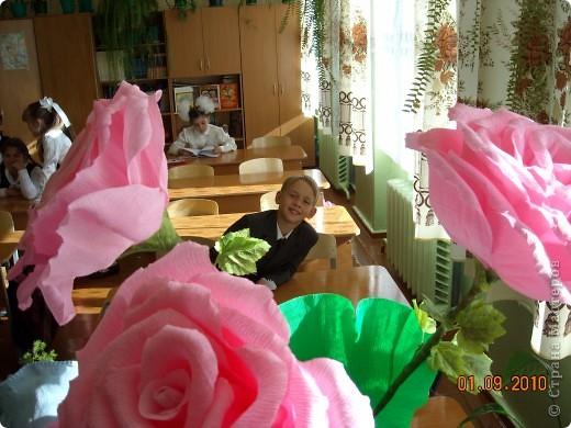 Розы поставлены на поток... Очень выручают! фото 3