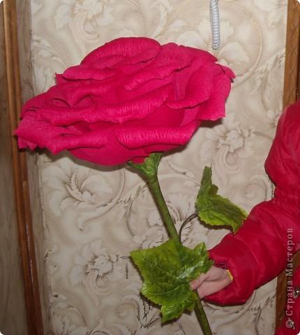Розы поставлены на поток... Очень выручают! фото 2