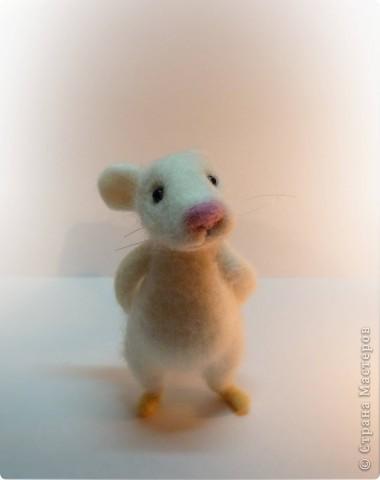 Мышонок фото 2