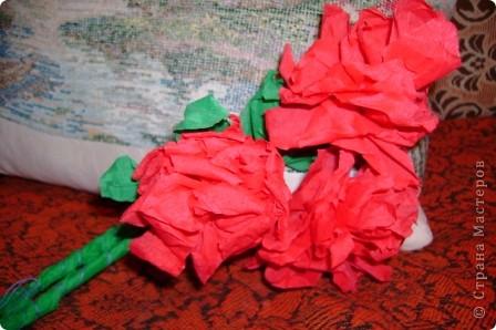 цветы розы фото 2