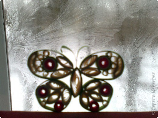 Бабочка. Дебют фото 2