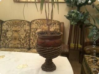 Была дома бабушкина стекляная отколотая ваза для фруктов. Выбросить было жалко..... вот получился поддон для цветов. фото 4