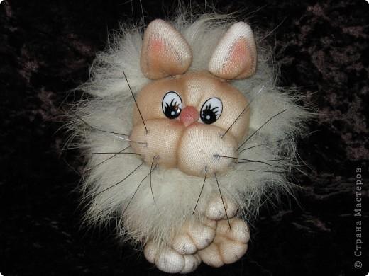 А вот такой кот (судя по выражению мордочки)  я сделала по МК Copilka. Правда лапки и передние и задние сразу же завязала еще до пришивания к голове - так показалось легче. Носик создала утяжками, усы из щетки. фото 1