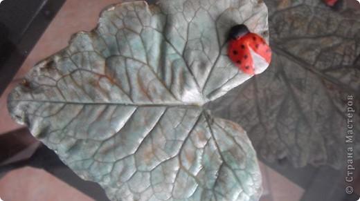 Осень дарит нам щедрые краски, которые могут нас радовать круглый год, если мы немного постараемся. Соберем фактурные листья, отольем в гипсе и раскрасим, как душе угодно. Ну и конечно украсим свой дом. фото 12
