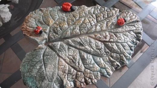 Осень дарит нам щедрые краски, которые могут нас радовать круглый год, если мы немного постараемся. Соберем фактурные листья, отольем в гипсе и раскрасим, как душе угодно. Ну и конечно украсим свой дом. фото 6