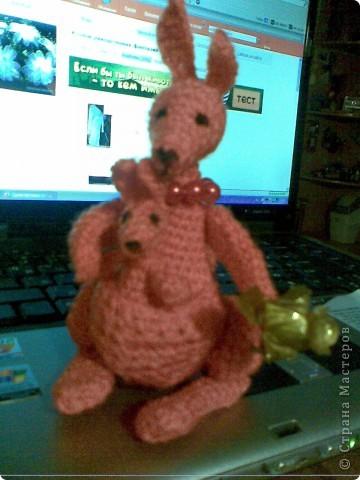 говорят-хочешь пребавления в семье-преобрети кенгуру с малышом... фото 1