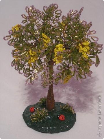 Моё первое дерево из бисера.  Бисероплетение.