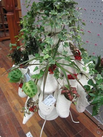 Это кашпо из обуви. Очень интересное решение. фото 1