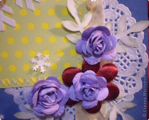 Зимние розы фото 3