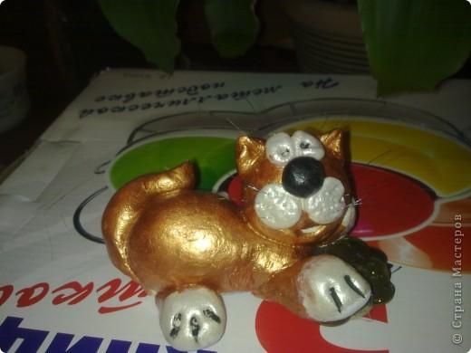 символ 2011года-котик на денежках фото 1