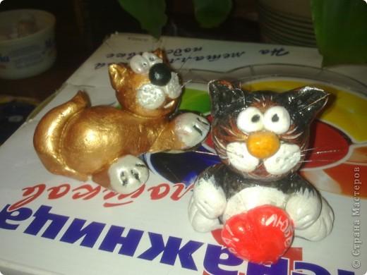 символ 2011года-котик на денежках фото 2