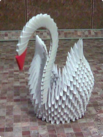 Моя первая работа (оригами модульное)