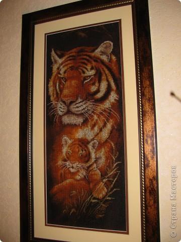 Тигрица 20x52см