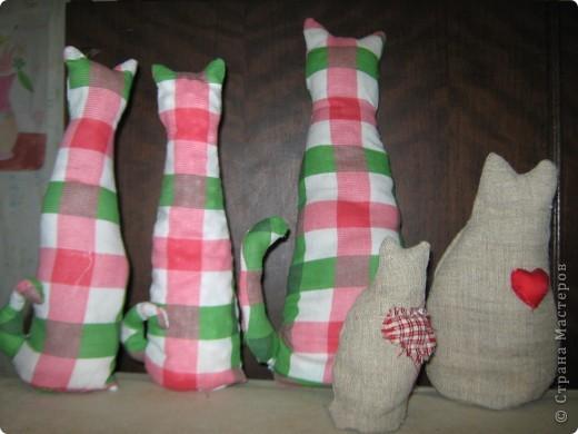 Кошки в подарок друзьям фото 1