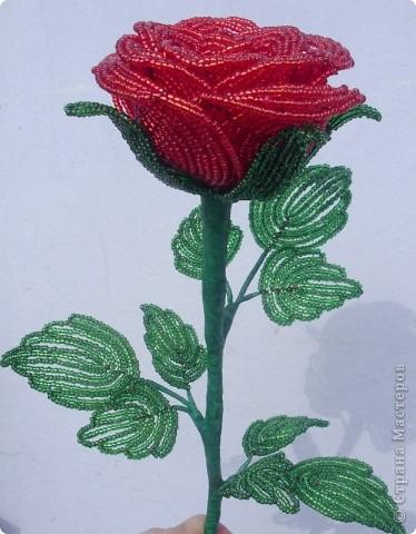 Поделки из бисера цветы и