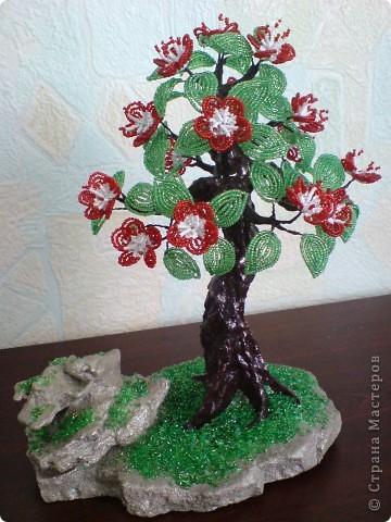 цветущее деревце фото 2