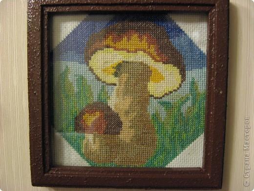 По грибы? фото 1
