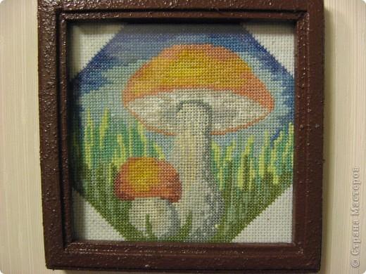 По грибы? фото 2