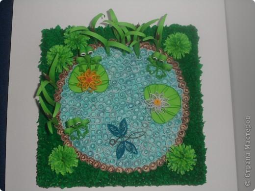 Пруд с лягушками. фото 1