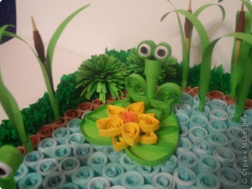 Пруд с лягушками. фото 3