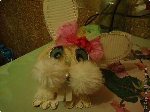 зайка к году кролика фото 1