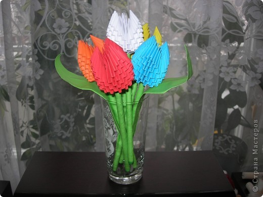 Маи первые тюльпаны!