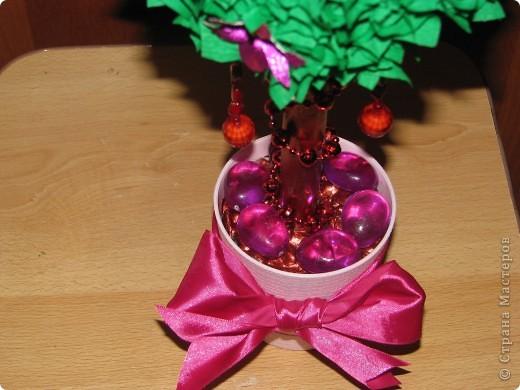 Малиновое дерево фото 2