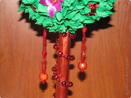 Малиновое дерево фото 8