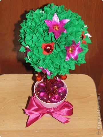 Малиновое дерево фото 9