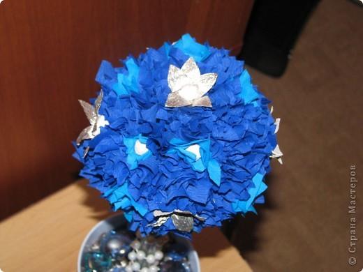 Голубая мечта фото 11