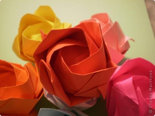 Роза Кавасаки-я ЕЁ,все таки научилась делать- спасибо учителю- svarnoi-02 фото 5