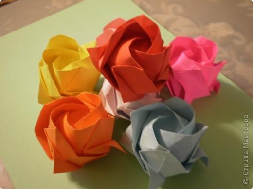 Роза Кавасаки-я ЕЁ,все таки научилась делать- спасибо учителю- svarnoi-02 фото 1
