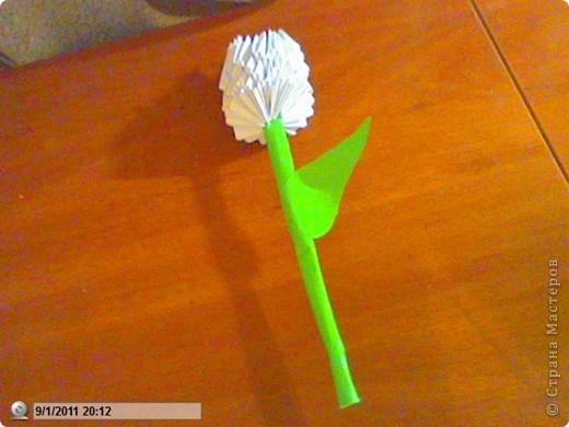 Это тюльпан!Я сделала его на годовщину свадьбы моих родителей) фото 2