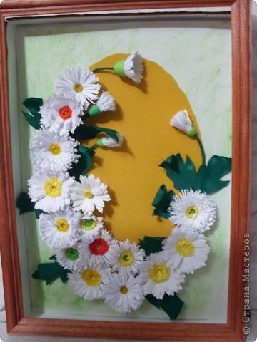 Хризантемки или осенние цветы.