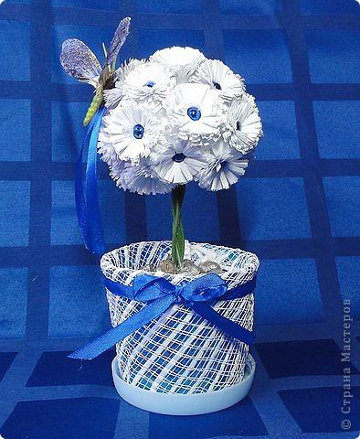 Мои бумажные цветы!