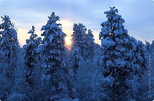 Поездка в Лапландию фото 4
