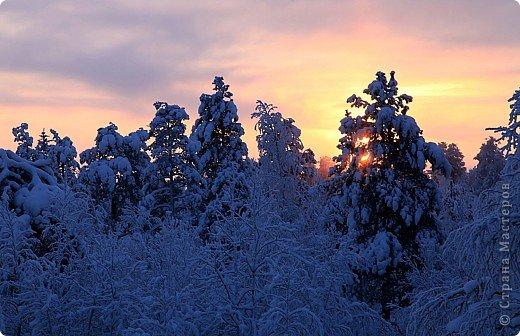 Поездка в Лапландию фото 6