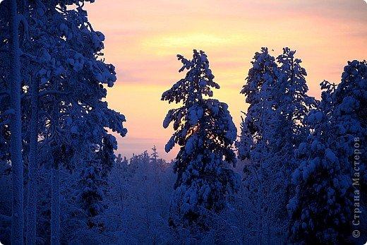 Поездка в Лапландию фото 7