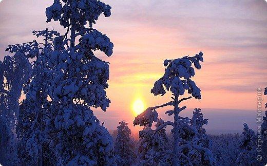 Поездка в Лапландию фото 1