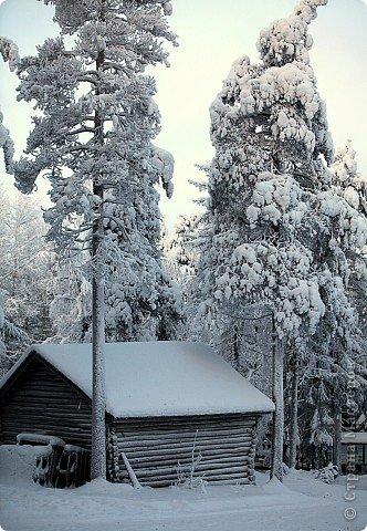 Поездка в Лапландию фото 22