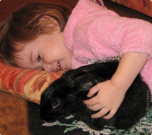 Все началось с желания завести такого зверька, с которым можно играть, но не бояться когтей и укусов. И вот, после 3х дневных уговоров мужа, я с диким трепетом в сердце и непередаваемым волнением, в конун НГ, 31 декабря, поехала в зоомагазин за кроликом! Но как же я была растроена, когда поняла, что найти кролика, в НГ, причем в год кролика - на грани фантастики!  фото 7