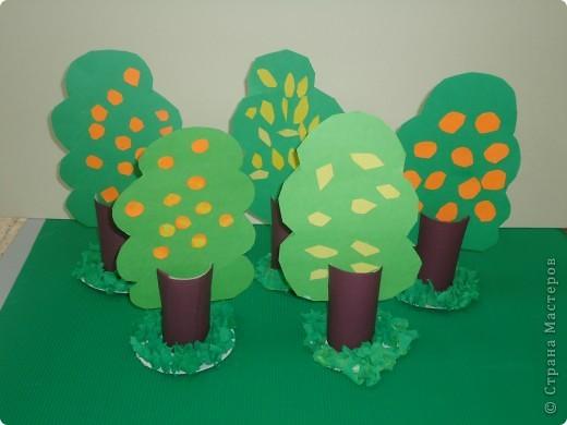 Цитрусовый сад фото 1