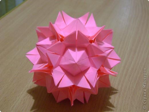 А теперь мой Амариллис в розовом. фото 1