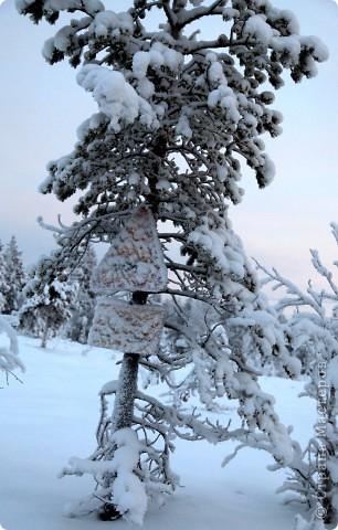 Поездка в Лапландию часть2 фото 10