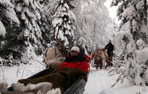 Поездка в Лапландию часть2 фото 14