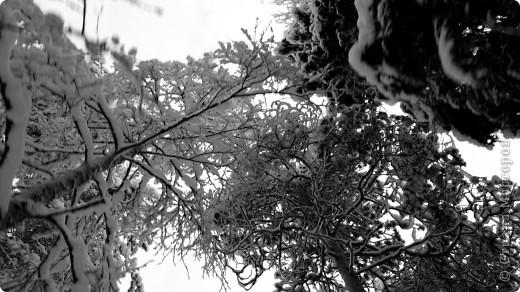 Поездка в Лапландию часть2 фото 18