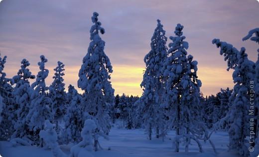 Поездка в Лапландию часть2 фото 21