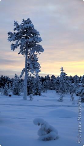 Поездка в Лапландию часть2 фото 22